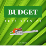 Budget Tree Service Port St Lucie Logo